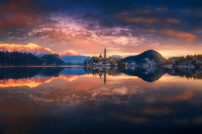 proposal_in_bled_lake_view