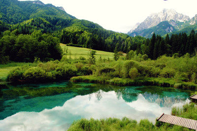 proposal_slovenia_zelenci